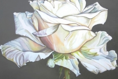 bloemen-2 (Kopie)