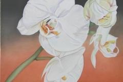 bloemen-4 (Kopie)