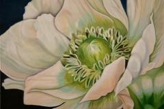 bloemen-5 (Kopie)