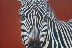 zebra1-Kopie
